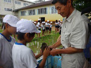 小学校で昔ながらの草取りと最新草取りロボを学ぶ!その2